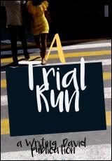 a-trial-run-writing-david
