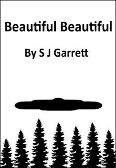 Beautiful Beautiful By S J Garrett