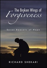 broken-wings-forgiveness-shekari