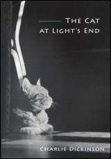 the-cat-at-lights-end