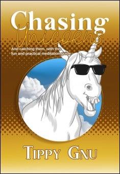 Book cover: Chasing Unicorns