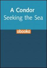 condor-seeking-sea-coiro