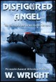 Book Cover: Disfigured Angel