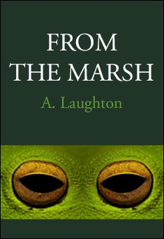 From The Marsh by A J Laughton