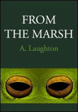 from-the-marsh-laughton