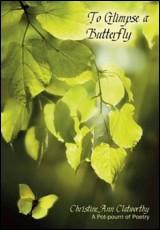 glimpse-butterfly-clatworthy