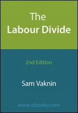 labour-divide-vaknin
