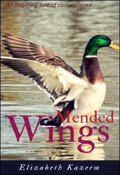Mended Wings. By Elizabeth Kazeem