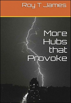 Book cover: More Hubs that Provoke