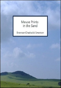 Mouseprints in the Sand by Brennan Chadwick Emerson