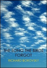 song-the-birds-forgot-borovsky