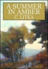 a-summer-in-amber-litka