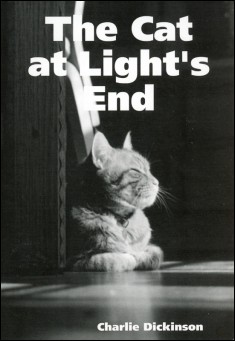 Book cover: The Cat at Light's End