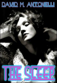 Book cover: The Sleep.