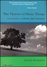 the-thieves-of-shiny-things