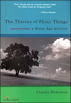 Book cover: The Thieves of Shiny Things