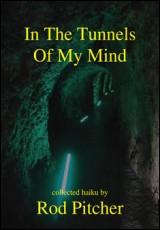 tunnels-mind-pitcher