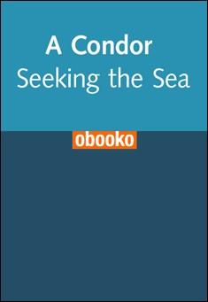 A Condor Seeking the Sea by Charles Coiro