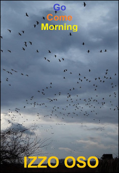 Book cover: Go Come Morning