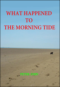 What Happened To The Morning Tide by Peter John