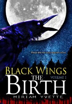 Book cover: The Birth. By Miriam Yvette