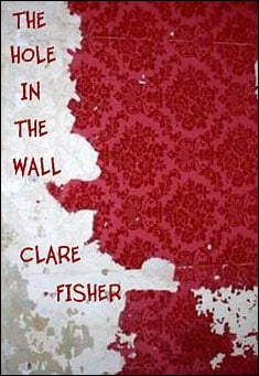 the-hole-in-the-wall-fisher