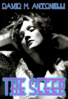 Book cover: The Sleep.