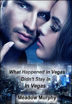 Book cover: What Happened in Vegas, Didn't Stay in Vegas, by Meadow Murphy
